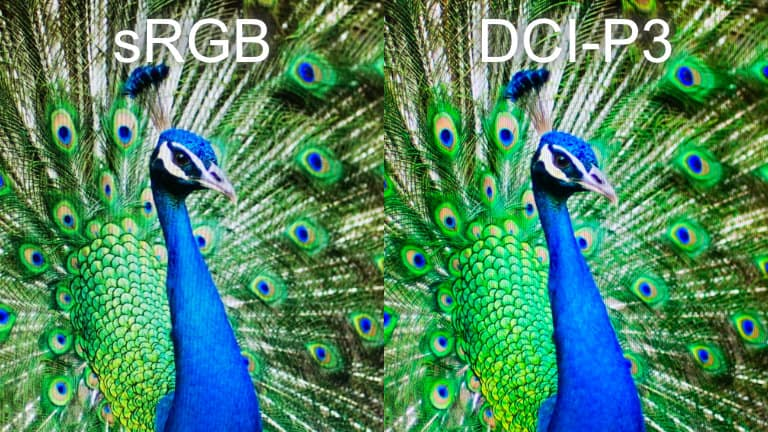 sRGB/DCI-P3の見え方の違い