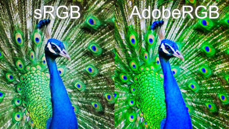 sRGBとAdobeRGBの見え方